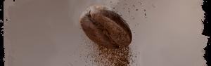 Coffee Bean Banner Garanti Roaster